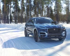 Anteprima F-PACE – Estremamente Jaguar